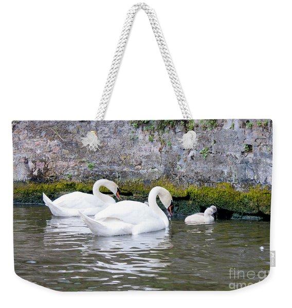 Swans And Cygnets In Brugge Canal Belgium Weekender Tote Bag