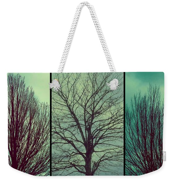 Weekender Tote Bag featuring the photograph Sweep The Sky by Patricia Strand