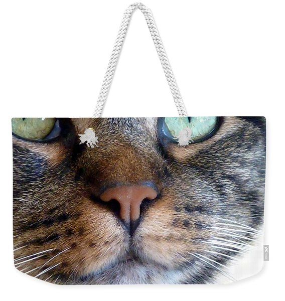 Weekender Tote Bag featuring the photograph Sweet Green Eyes by Patricia Strand