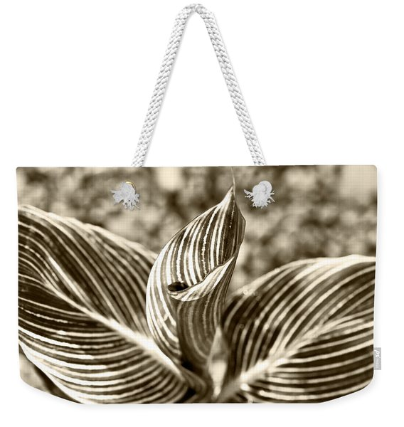 Swirls And Stripes Weekender Tote Bag