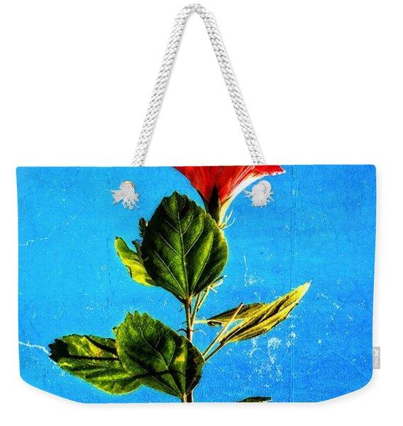 Tall Hibiscus - Flower Art By Sharon Cummings Weekender Tote Bag