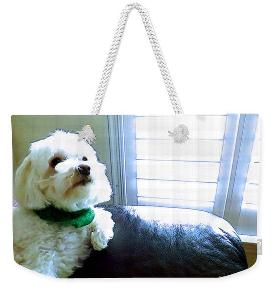 Teddy Weekender Tote Bag