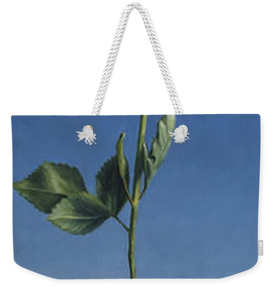 Tenuous Still-life 1 Weekender Tote Bag