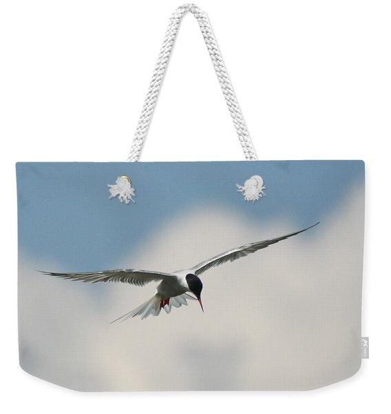 Tern In Flight Weekender Tote Bag