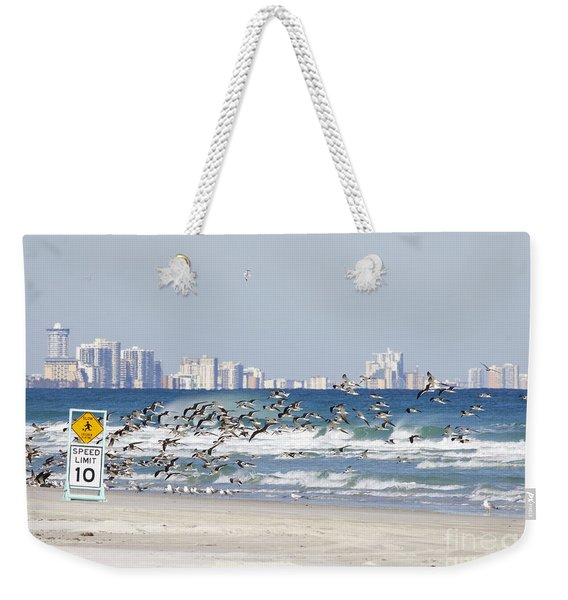 Terns On The Move Weekender Tote Bag
