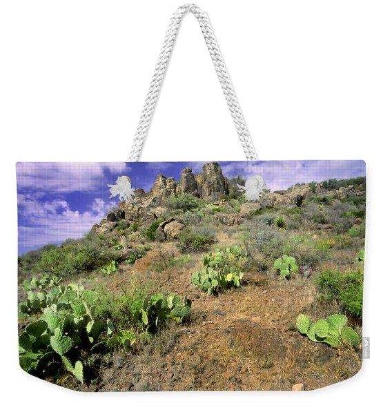 Texas Desert Weekender Tote Bag