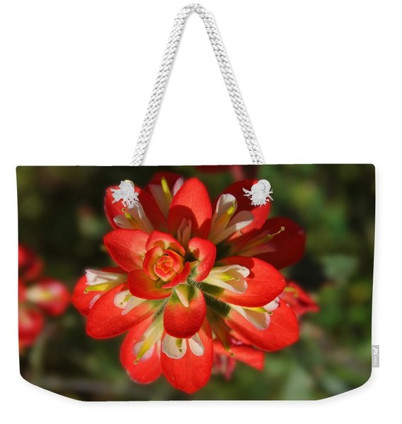 Texas Paintbrush Weekender Tote Bag