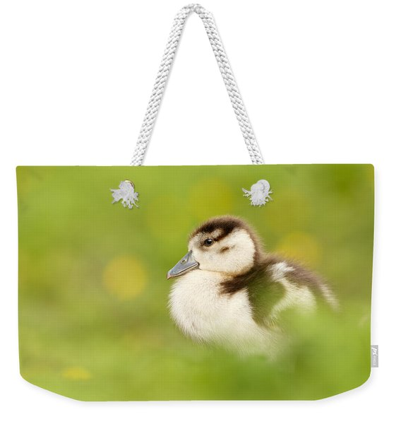 The Gosling In The Grass Weekender Tote Bag