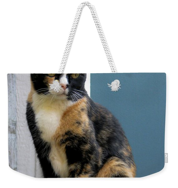 The Art Of Watching Weekender Tote Bag