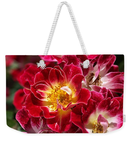 The Beauty Of Carpet Roses  Weekender Tote Bag
