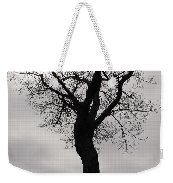 The Chill Of Spring In The Shenandoah Weekender Tote Bag