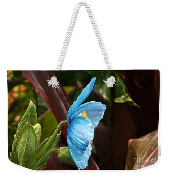 The Colors Of The Himalayan Blue Poppy Weekender Tote Bag