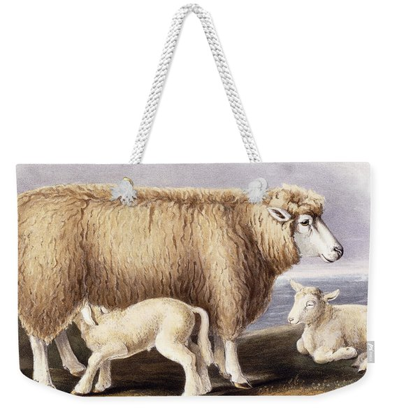 The Cotswold Breed Weekender Tote Bag