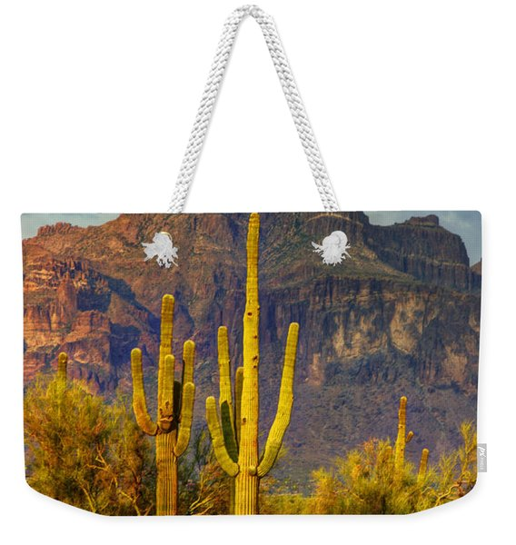 The Desert Golden Hour II  Weekender Tote Bag