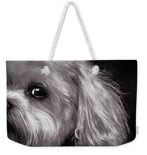 The Dog Next Door Weekender Tote Bag