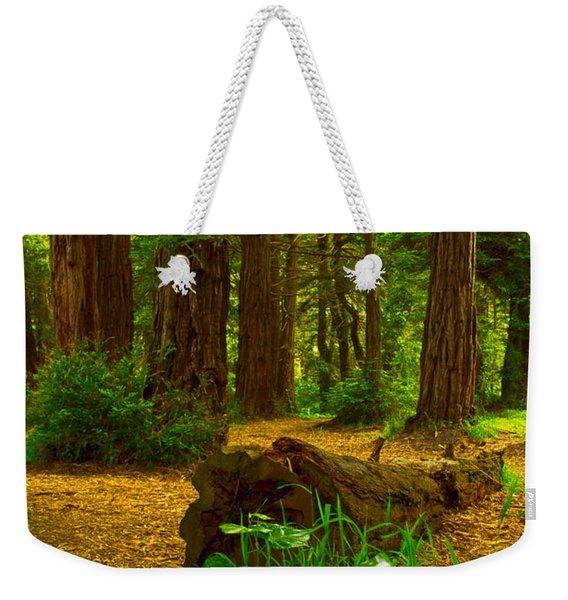 The Forest Of Golden Gate Park Weekender Tote Bag
