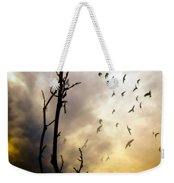 The Gods Laugh When The Winter Crows Fly Weekender Tote Bag