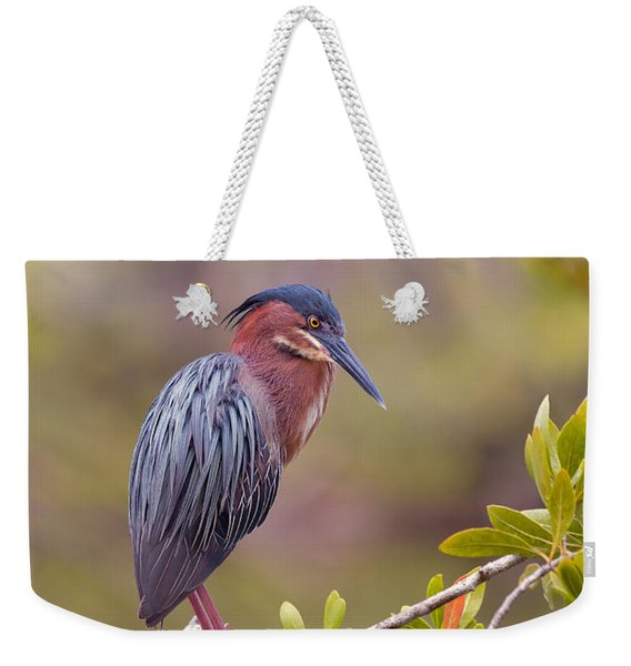 The Green Heron At Blue Hole Weekender Tote Bag
