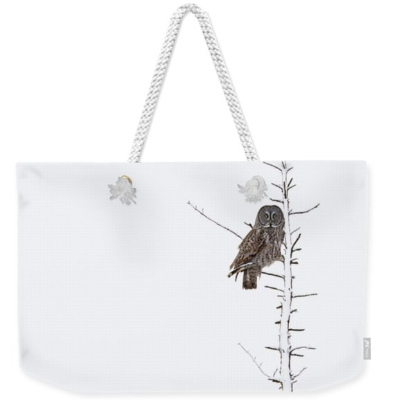 The Grey Hunter On White Weekender Tote Bag