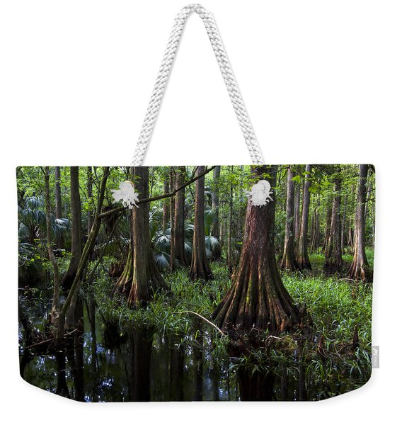 The Hammock Weekender Tote Bag