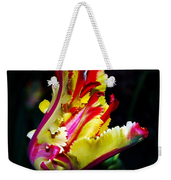 The Intruder Weekender Tote Bag