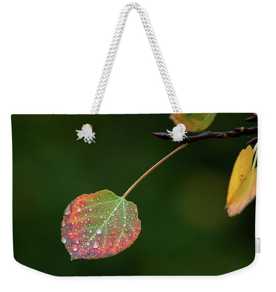 The Latter Rain  Weekender Tote Bag