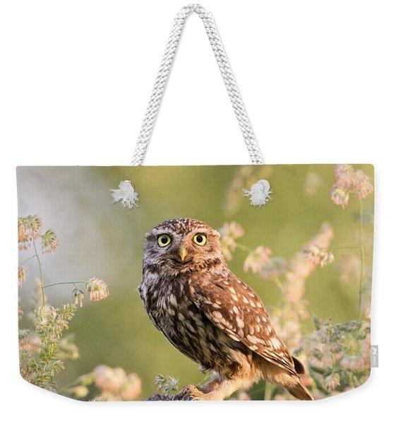 The Little Owl Weekender Tote Bag