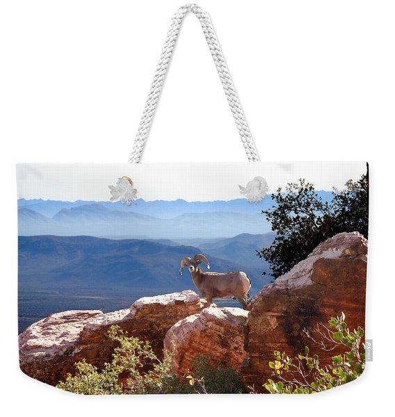 The Lookout Weekender Tote Bag