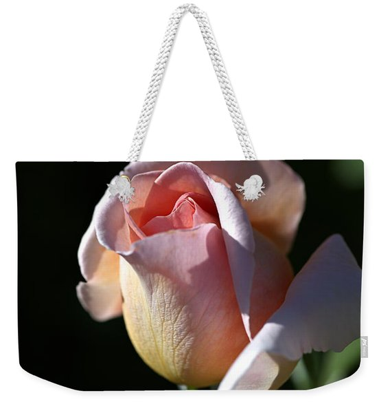 The Morning Pink Rose Weekender Tote Bag