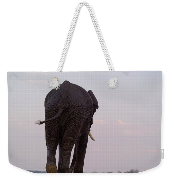 The Rear End Of An Elephant In Chobe Weekender Tote Bag
