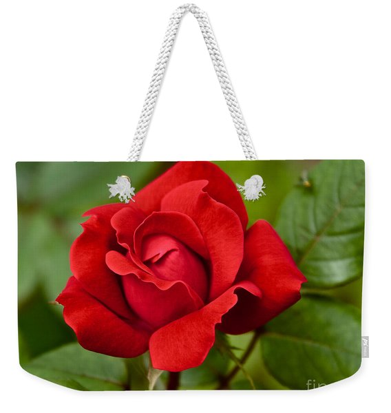 Weekender Tote Bag featuring the photograph The Rose by William Norton