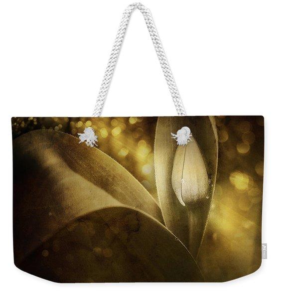 The Unveiling 2 Weekender Tote Bag