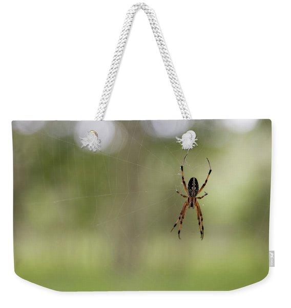 The Zig-zag Spider, An Araneid Neoscona Weekender Tote Bag