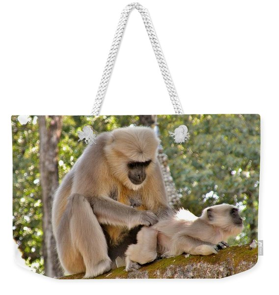 There Is Nothing Like A  Backscratch - Monkeys Rishikesh India Weekender Tote Bag