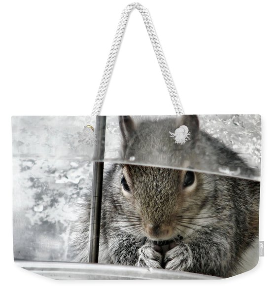 Thief In The Birdfeeder Weekender Tote Bag
