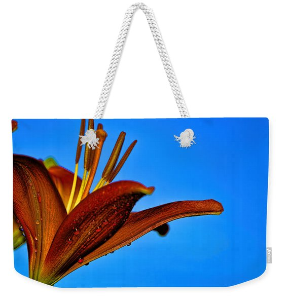 Thirsty Lily In Hdr Art  Weekender Tote Bag