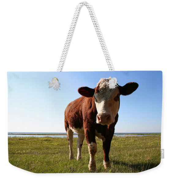 This Is My Grass Weekender Tote Bag