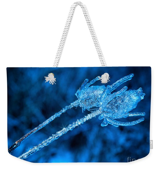 Thistle Plant On Icy Night Weekender Tote Bag