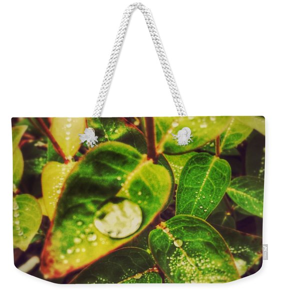 Three Coins In The Fountain Weekender Tote Bag