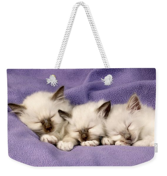 Three Kittens Sleeping Weekender Tote Bag