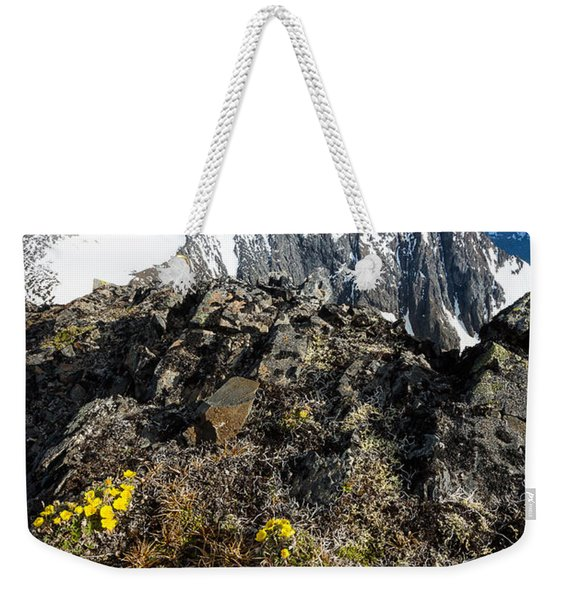 Weekender Tote Bag featuring the photograph Thriving In Adversity by Tim Newton