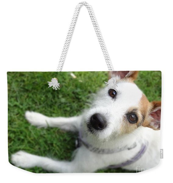 Throw It Again Weekender Tote Bag