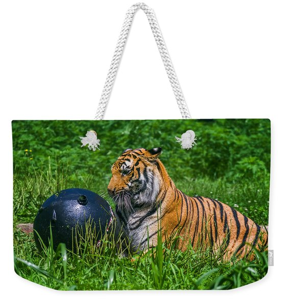 Tiger Playing With Ball Weekender Tote Bag