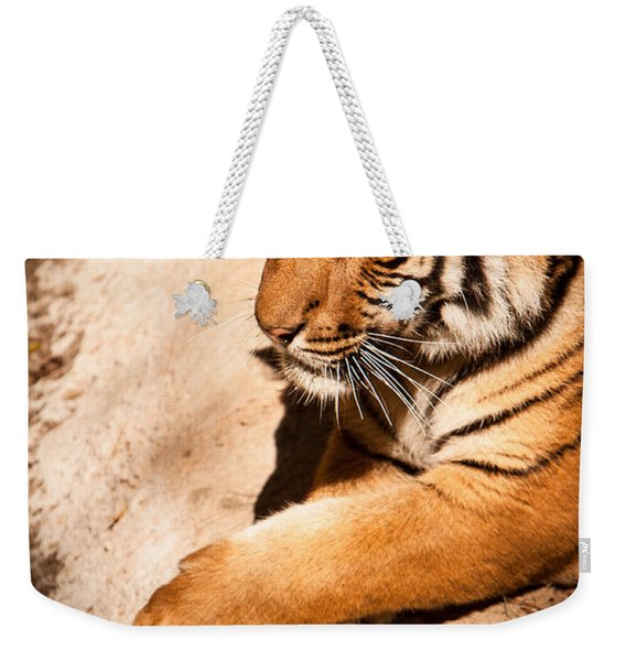 Weekender Tote Bag featuring the photograph Tiger Resting by John Wadleigh