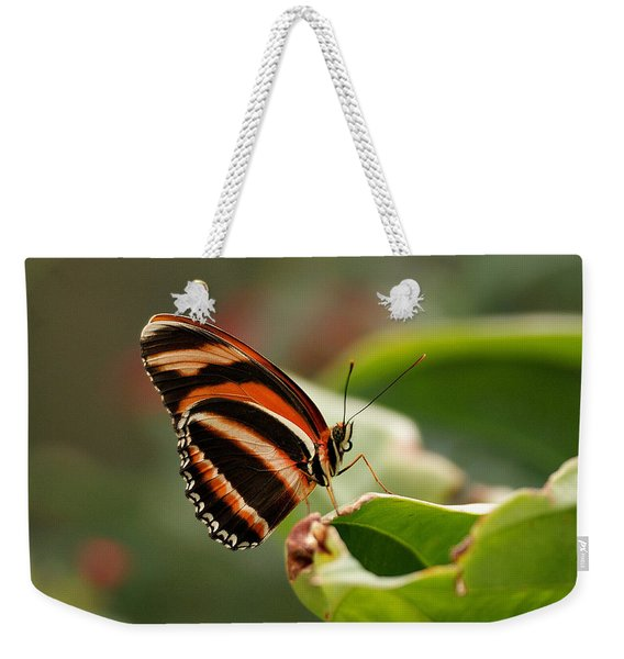 Tiger Striped Butterfly Weekender Tote Bag