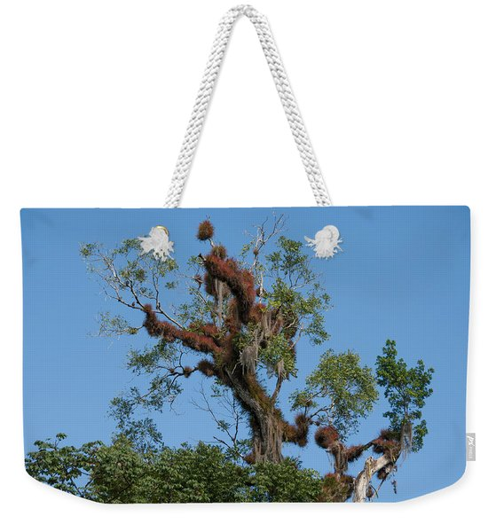 Tikal Furry Tree Weekender Tote Bag