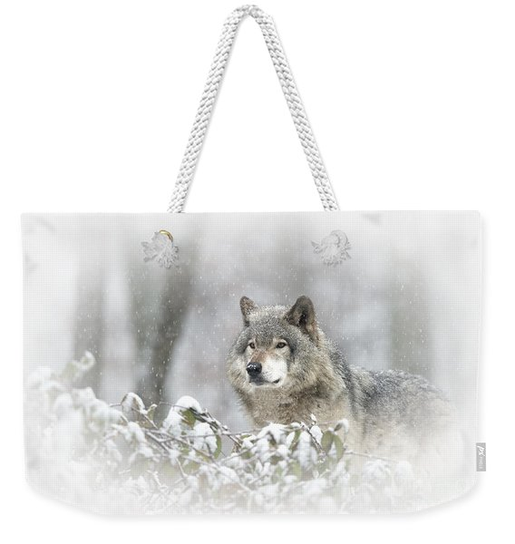 Timber Wolf Pictures 279 Weekender Tote Bag