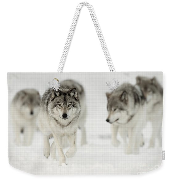 Timber Wolf Pictures 65 Weekender Tote Bag