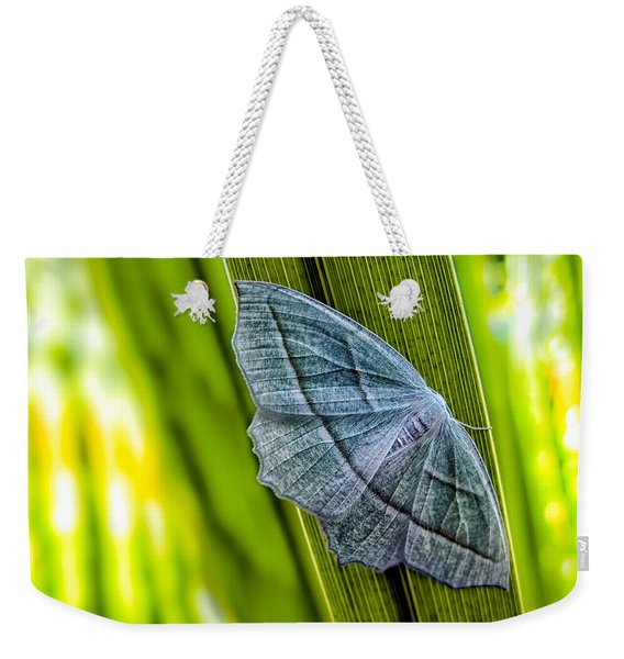 Tiny Moth On A Blade Of Grass Weekender Tote Bag
