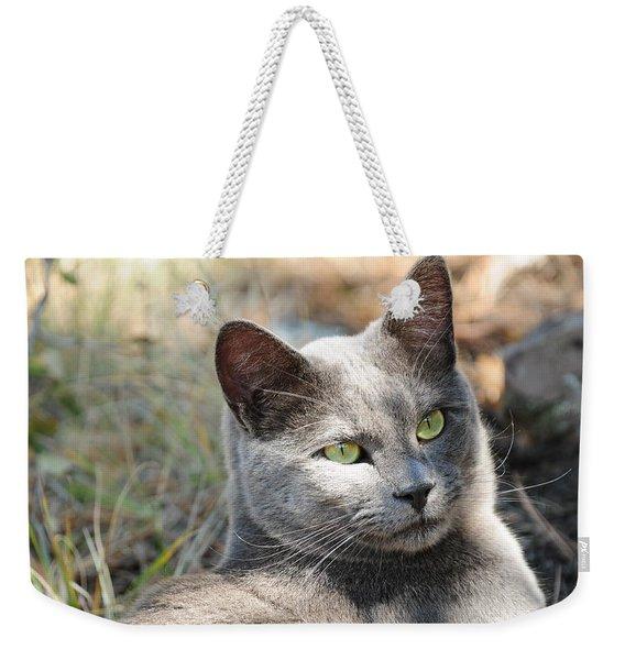 Tom Cat Weekender Tote Bag